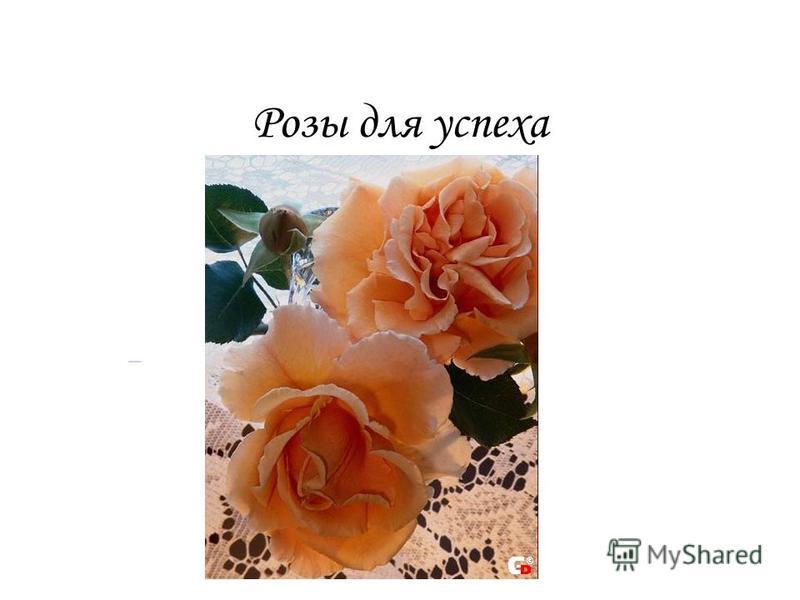 Розы для успеха