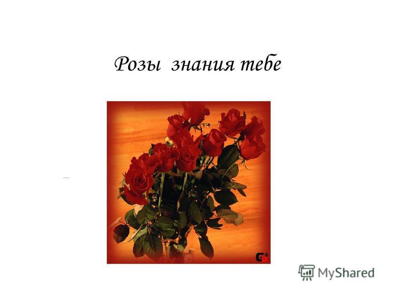 Розы знания тебе