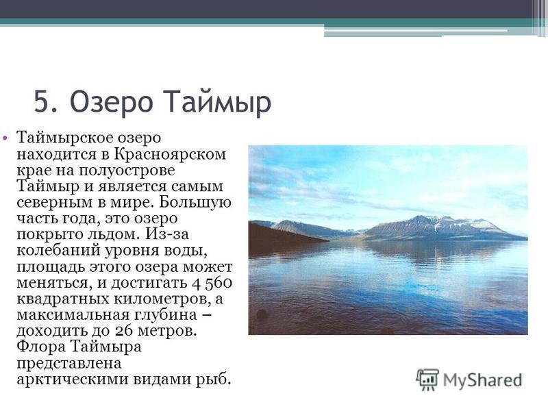 5. Озеро Таймыр Таймырское озеро находится в Красноярском крае на полуострове Таймыр и является самым северным в мире. Большую часть года, это озеро покрыто льдом. Из-за колебаний уровня воды, площадь этого озера может меняться, и достигать 4 560 ква