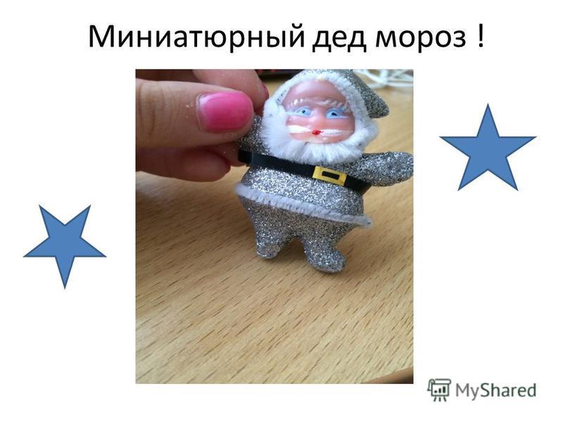 Миниатюрный дед мороз !