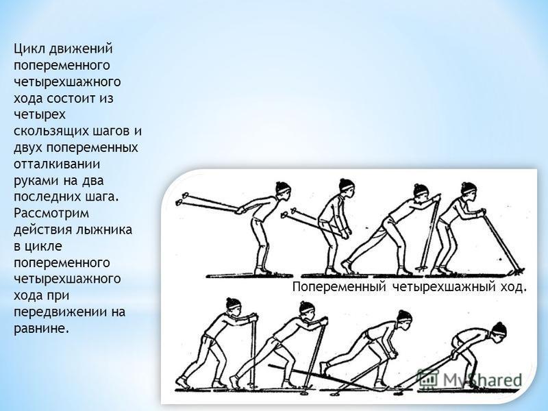 Попеременный четырехшажный xoд. Цикл движений попеременного четырехшажного хода состоит из четырех скользящих шагов и двух попеременных отталкивании руками на два последних шага. Рассмотрим действия лыжника в цикле попеременного четырехшажного хода п