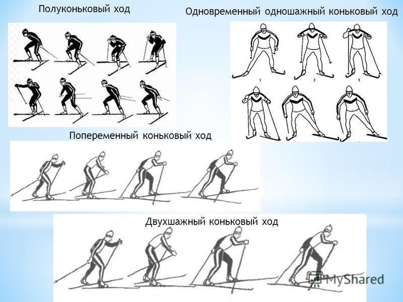 Полуконьковый ход Двухшажный коньковый ход Одновременный одношажный коньковый ход Попеременный коньковый ход