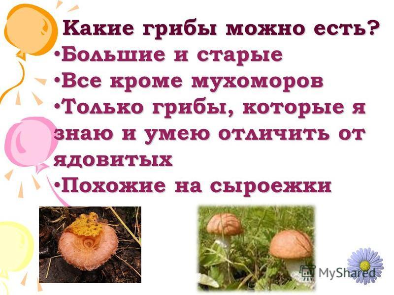 Какие грибы можно есть? Большие и старые Большие и старые Все кроме мухоморов Все кроме мухоморов Только грибы, которые я знаю и умею отличить от ядовитых Только грибы, которые я знаю и умею отличить от ядовитых Похожие на сыроежки Похожие на сыроежк