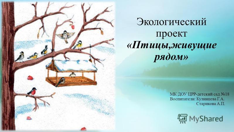 Экологический проект «Птицы,живущие рядом» МК ДОУ ЦРР-детский сад 18 Воспитатели: Кулинцева Г.А. Старикова А.П.