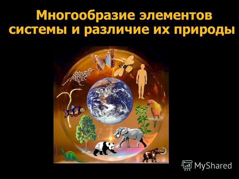 Многообразие элементов системы и различие их природы