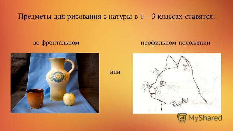 Предметы для рисования с натуры в 13 классах ставятся: во фронтальном профильном положении или
