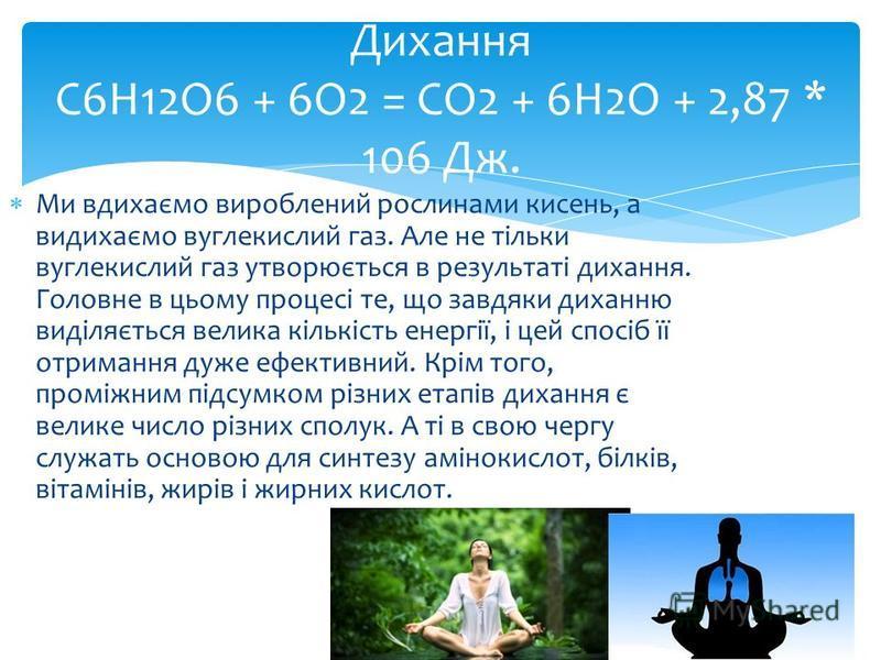 Ми вдихаємо вироблений рослинами кисень, а видихаємо вуглекислий газ. Але не тільки вуглекислий газ утворюється в результаті дихання. Головне в цьому процесі те, що завдяки диханню виділяється велика кількість енергії, і цей спосіб її отримання дуже