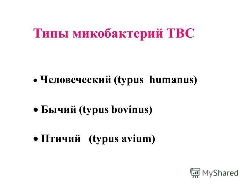 Типы микобактерий ТВС Человеческий (typus humanus) Бычий (typus bovinus) Птичий (typus avium)