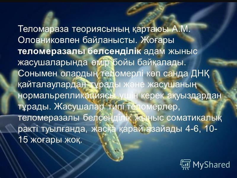 Теломараза теориясының қартаюы А.М. Оловниковпен байланысты. Жоғары теломеразалы белсенділік адам жыныс жасушаларында өмір бойы байқалады. Сонымен олардың теломерлі көп санта ДНҚ қайталаулардан тұрады және жасушаның нормальрепликациясы үшін керек ақу