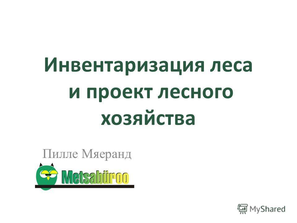 Инвентаризация леса и проект лесного хозяйства Пилле Мяеранд