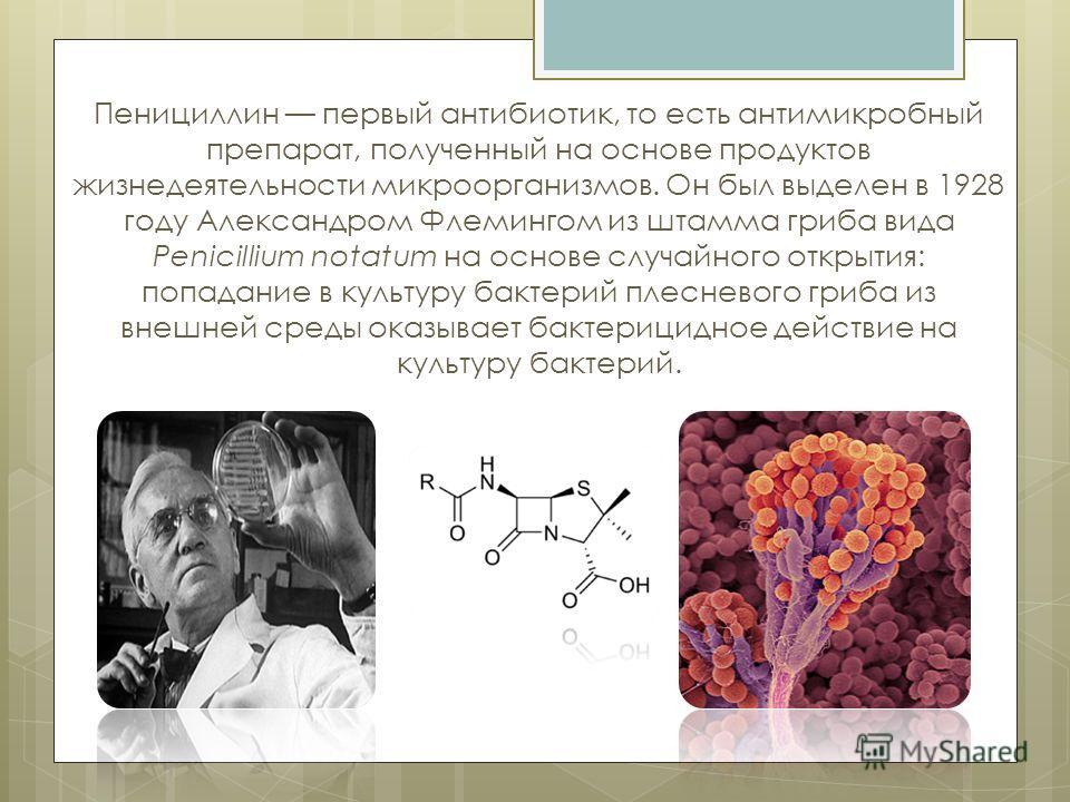 Пенициллин первый антибиотик, то есть антимикробный препарат, полученный на основе продуктов жизнедеятельности микроорганизмов. Он был выделен в 1928 году Александром Флемингом из штамма гриба вида Penicillium notatum на основе случайного открытия: п