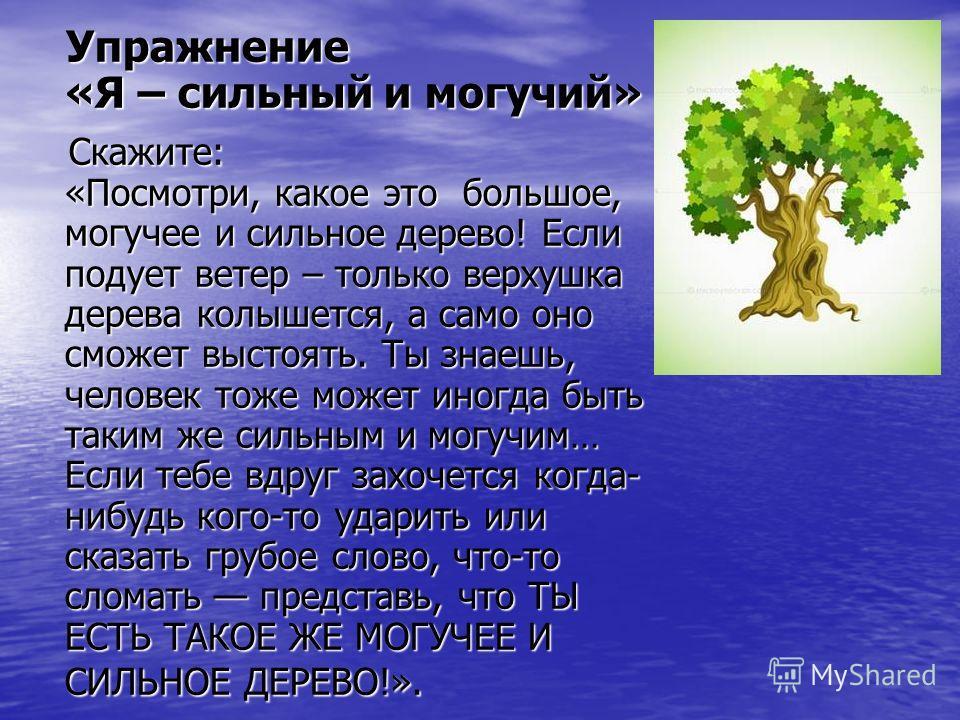 Упражнение «Я – сильный и могучий» Упражнение «Я – сильный и могучий» Скажите: «Посмотри, какое это большое, могучее и сильное дерево! Если подует ветер – только верхушка дерева колышется, а само оно сможет выстоять. Ты знаешь, человек тоже может ино