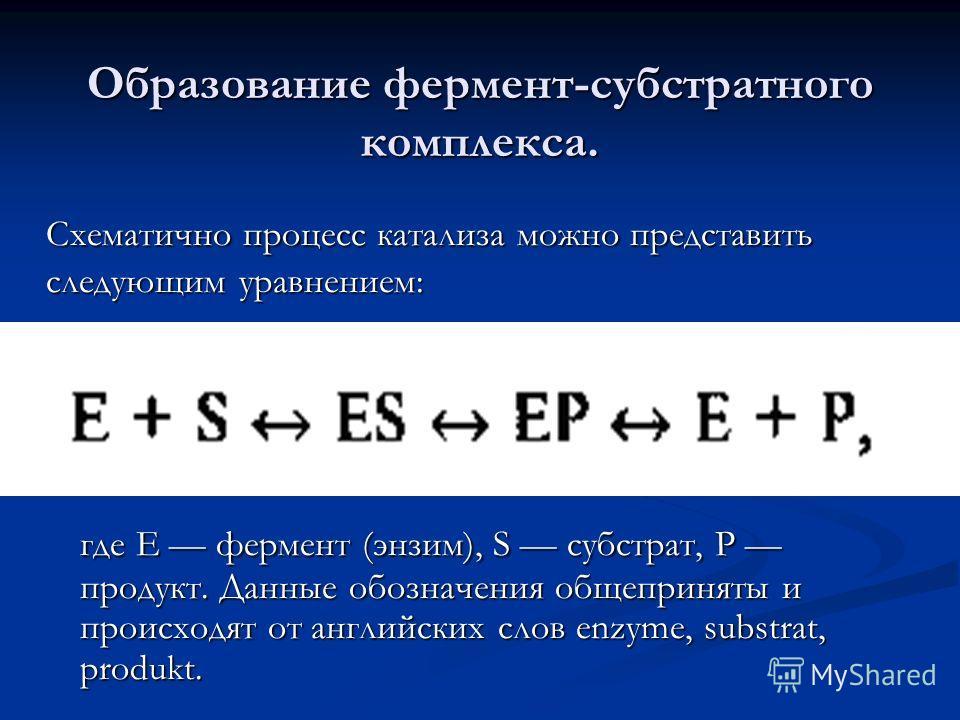 Образование фермент-субстратного комплекса. где Е фермент (энзим), S субстрат, Р продукт. Данные обозначения общеприняты и происходят от английских слов enzyme, substrat, produkt. Схематично процесс катализа можно представить следующим уравнением:
