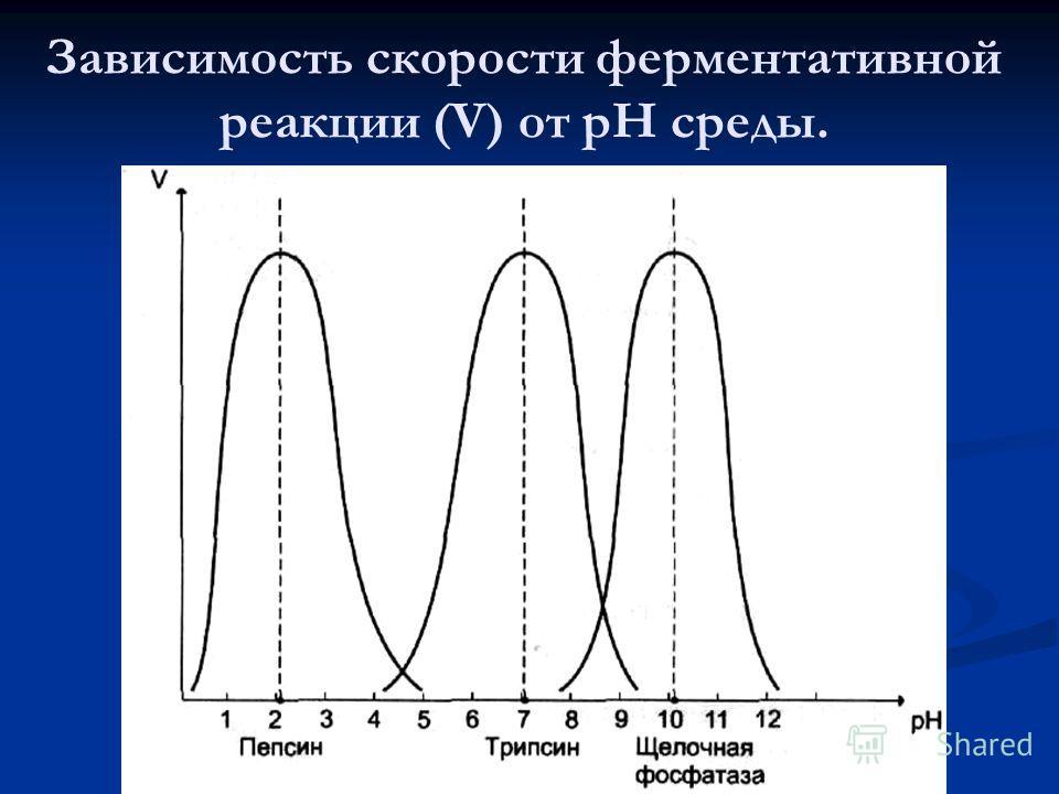 Зависимость скорости ферментативной реакции (V) от рН среды.