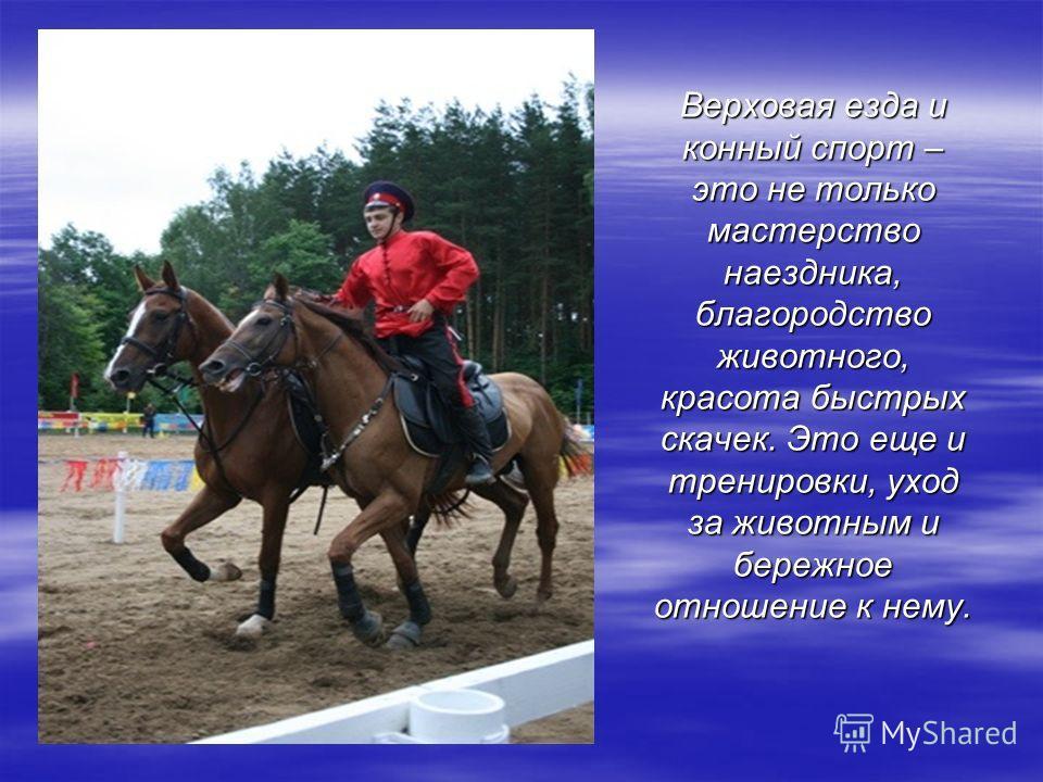 Верховая езда и конный спорт – это не только мастерство наездника, благородство животного, красота быстрых скачек. Это еще и тренировки, уход за животным и бережное отношение к нему.
