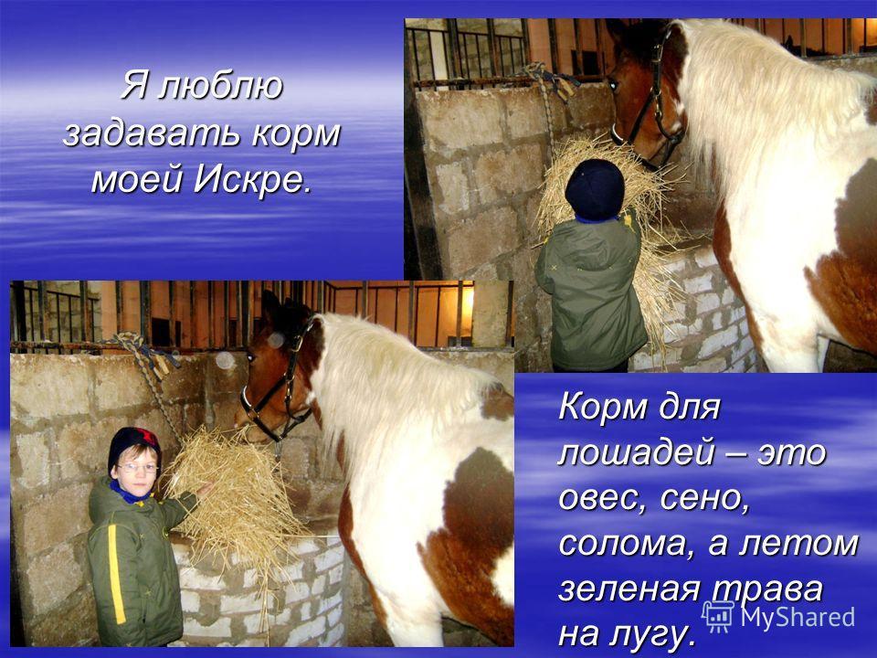 Я люблю задавать корм моей Искре. Корм для лошадей – это овес, сено, солома, а летом зеленая трава на лугу.