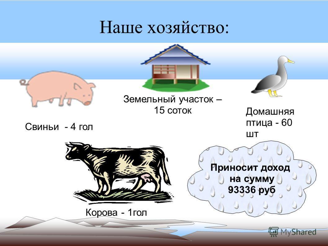 Наше хозяйство: Свиньи - 4 гол Корова - 1гол Домашняя птица - 60 шт Земельный участок – 15 соток Приносит доход на сумму 93336 руб