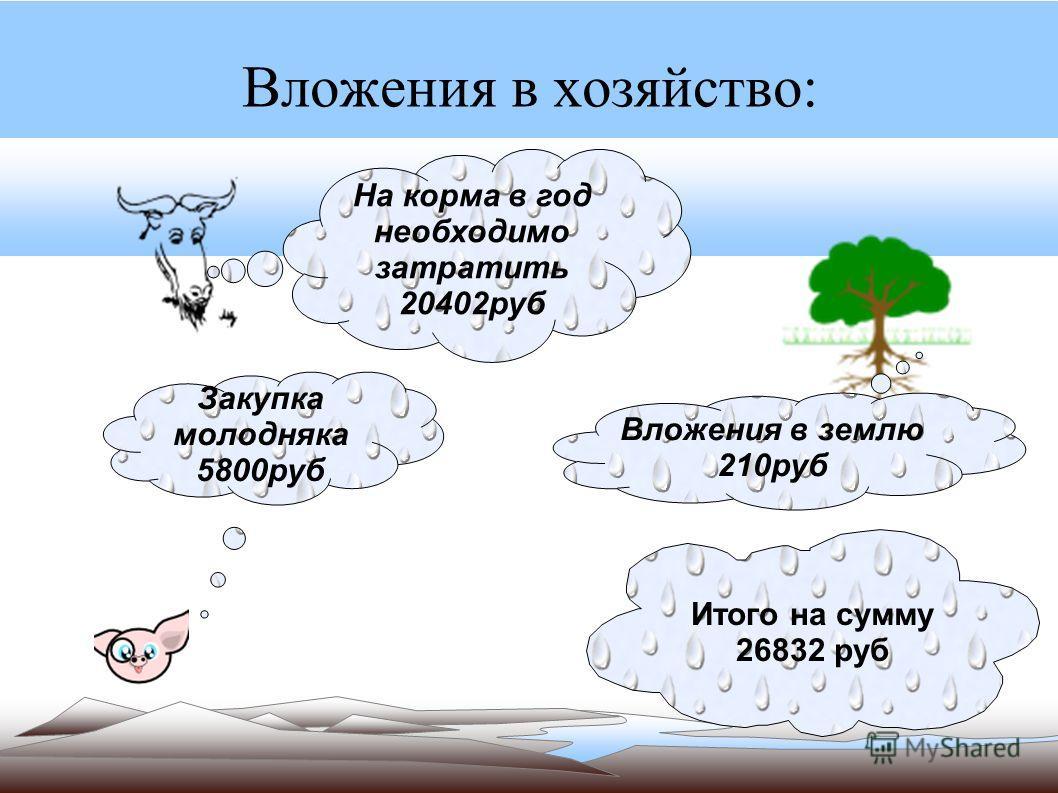 Вложения в хозяйство: На корма в год необходимо затратить 20402руб Вложения в землю 210руб Закупка молодняка 5800руб Итого на сумму 26832 руб