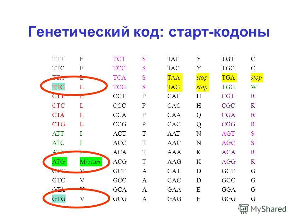 Генетический код: старт-кодоны