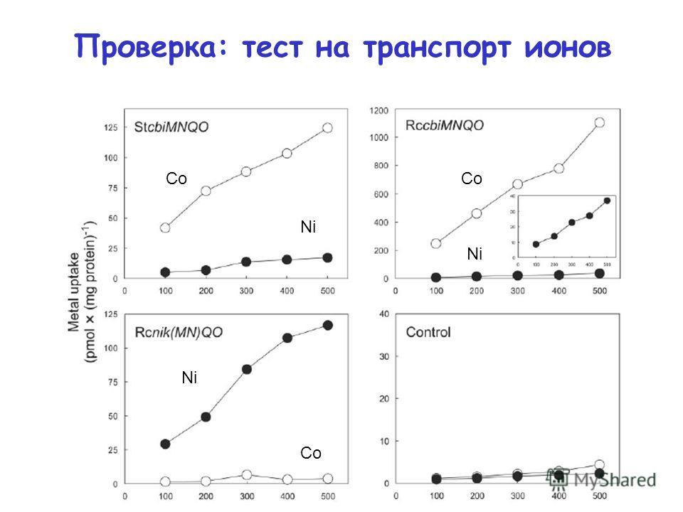 Проверка: тест на транспорт ионов Co Ni