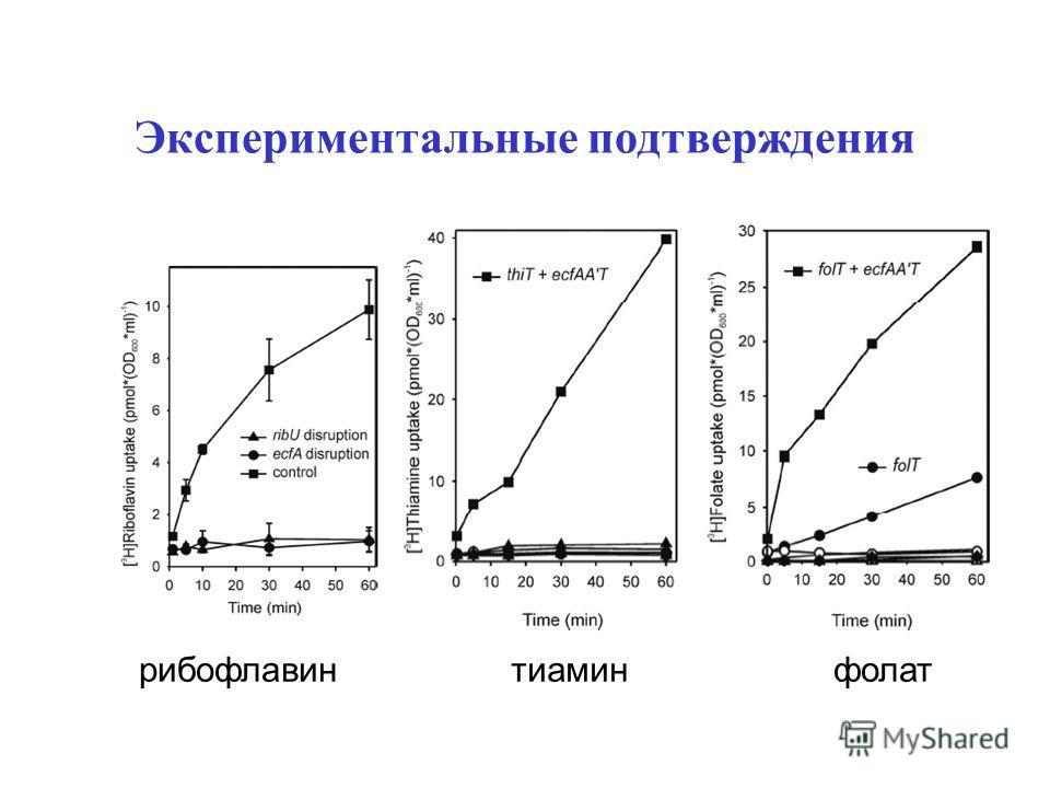 Экспериментальные подтверждения рибофлавинтиаминфолат