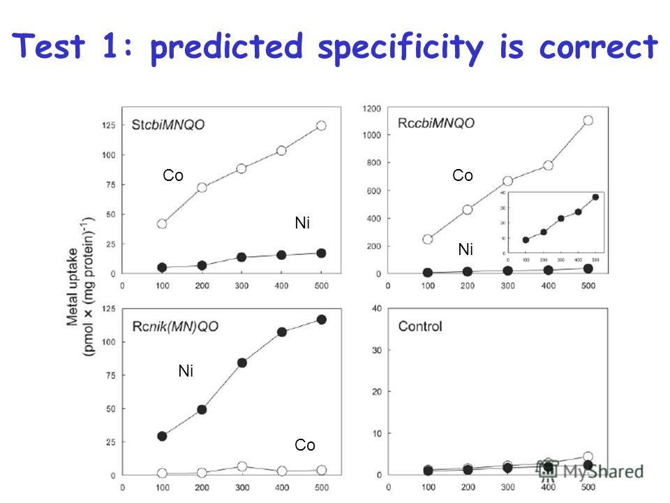 Test 1: predicted specificity is correct Co Ni
