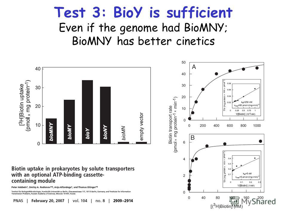 Test 3: BioY is sufficient Even if the genome had BioMNY; BioMNY has better cinetics