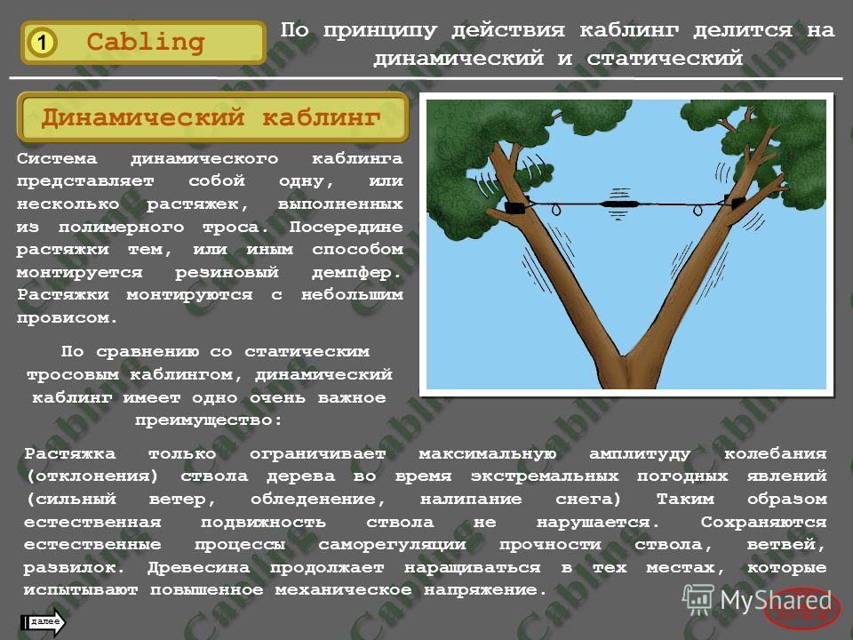 1 Cabling По принципу действия каблинг делится на динамический и статический 2004© www.udal.ru 410-44-45 далее Динамический каблинг Система динамического каблинга представляет собой одну, или несколько растяжек, выполненных из полимерного троса. Посе