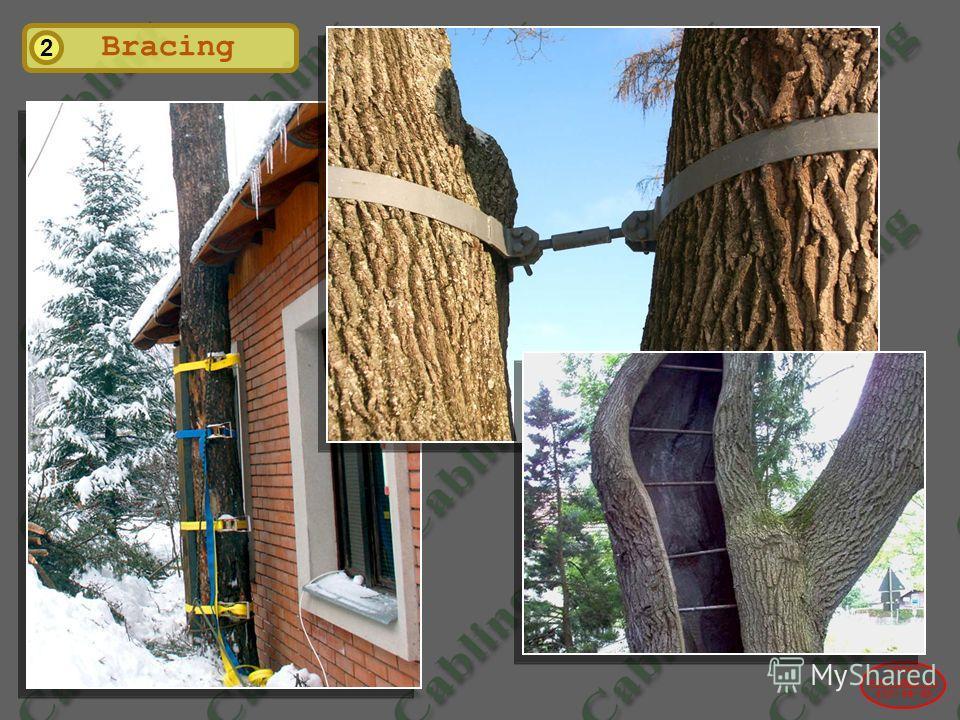 2004© www.udal.ru 410-44-45 2 Bracing
