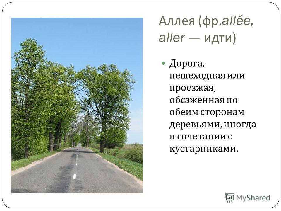 Аллея ( фр.allée, aller идти ) Дорога, пешеходная или проезжая, обсаженная по обеим сторонам деревьями, иногда в сочетании с кустарниками.