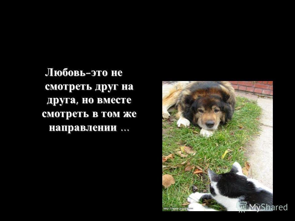Любовь-это не смотреть друг на друга, но вместе смотреть в том же направлении...