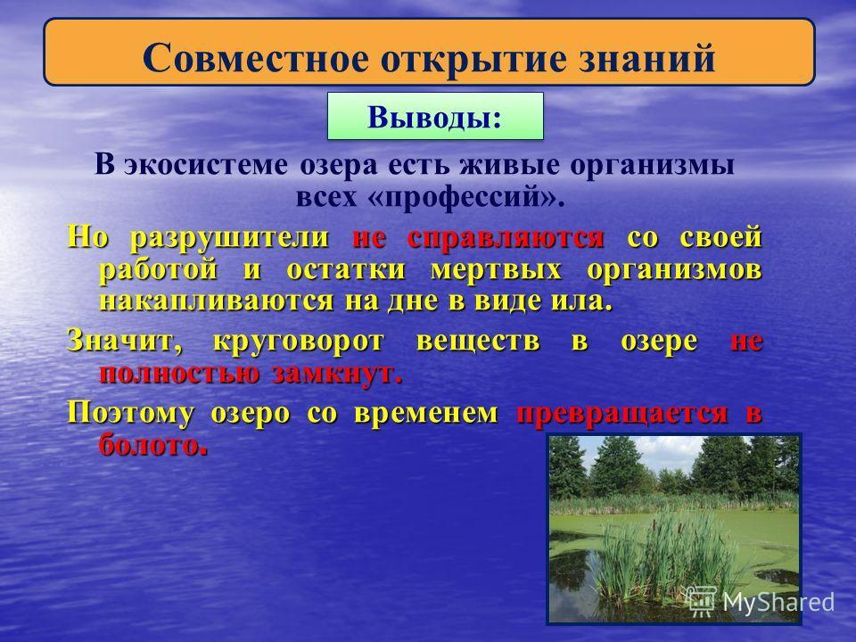 Выводы: В экосистеме озера есть живые организмы всех «профессий». Но разрушители не справляются со своей работой и остатки мертвых организмов накапливаются на дне в виде ила. Значит, круговорот веществ в озере не полностью замкнут. Поэтому озеро со в