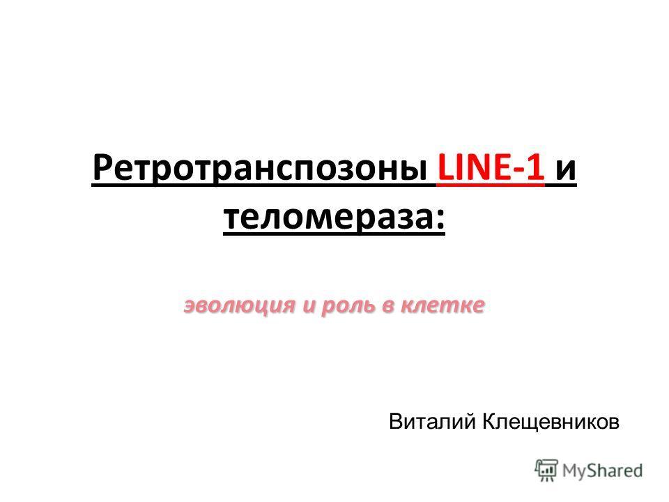 Ретротранспозоны LINE-1 и теломераза: эволюция и роль в клетке Виталий Клещевников