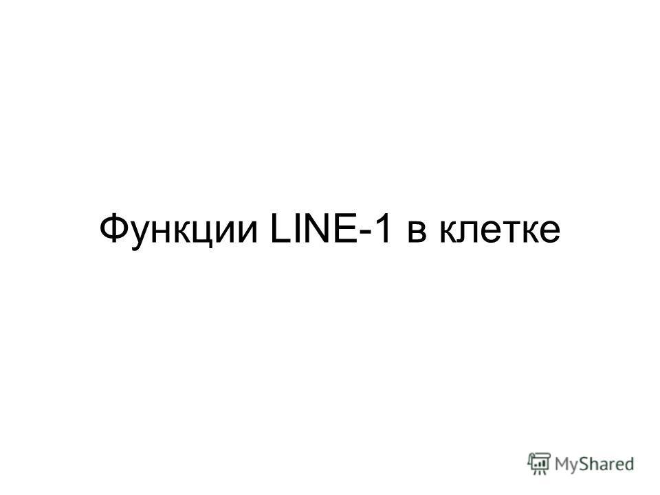 Функции LINE-1 в клетке
