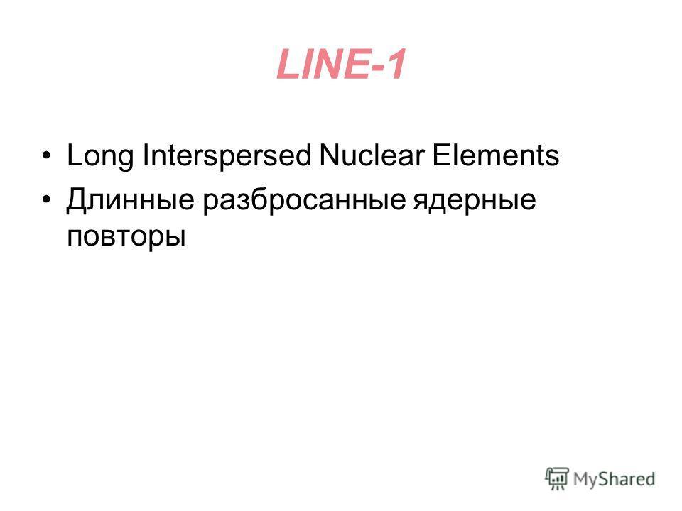 LINE-1 Long Interspersed Nuclear Elements Длинные разбросанные ядерные повторы