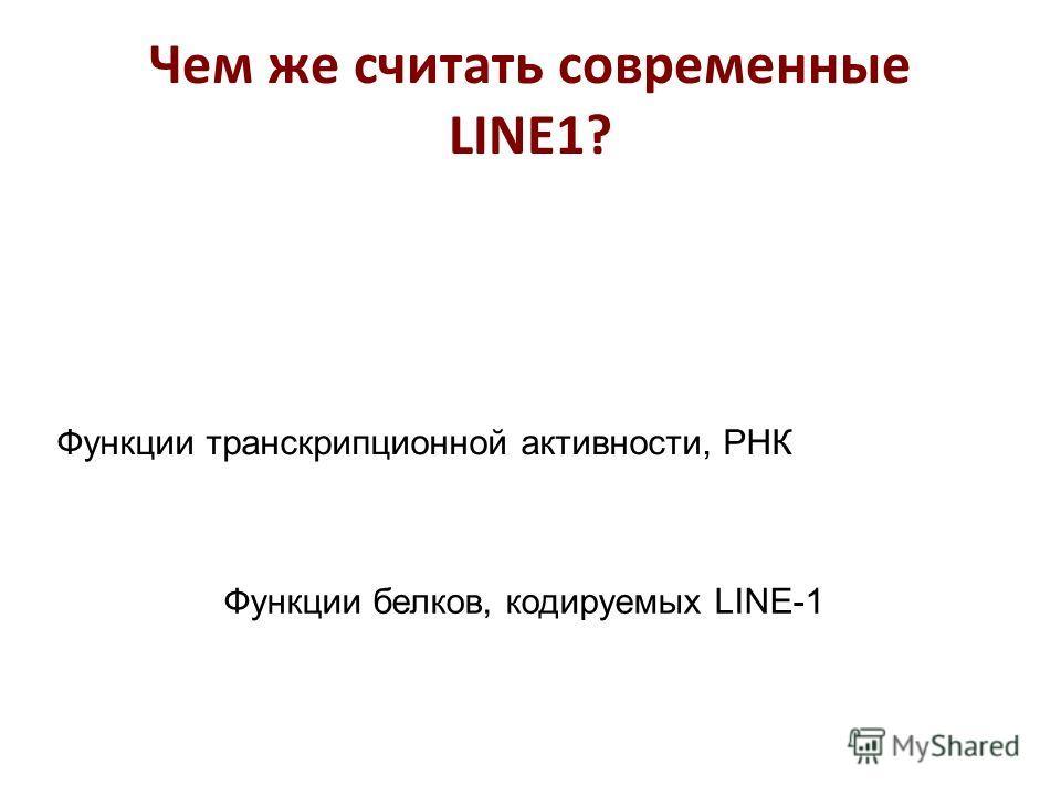 Функции транскрипционной активности, РНК Функции белков, кодируемых LINE-1 Чем же считать современные LINE1?