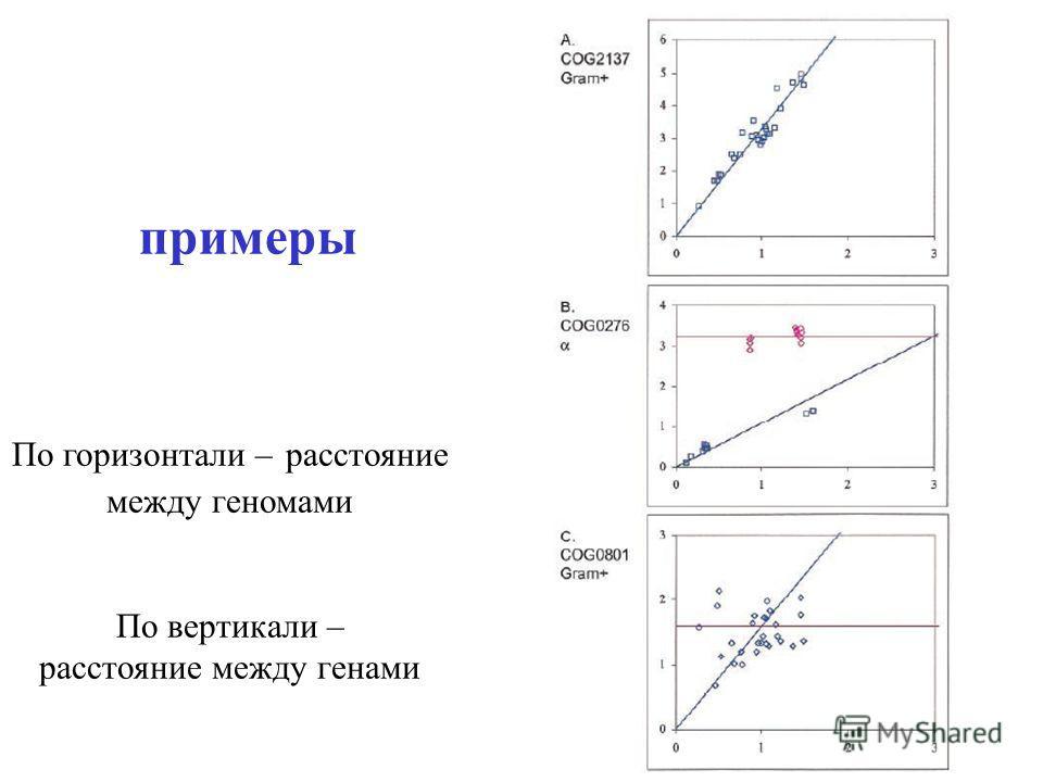 примеры По горизонтали – расстояние между геномами По вертикали – расстояние между генами