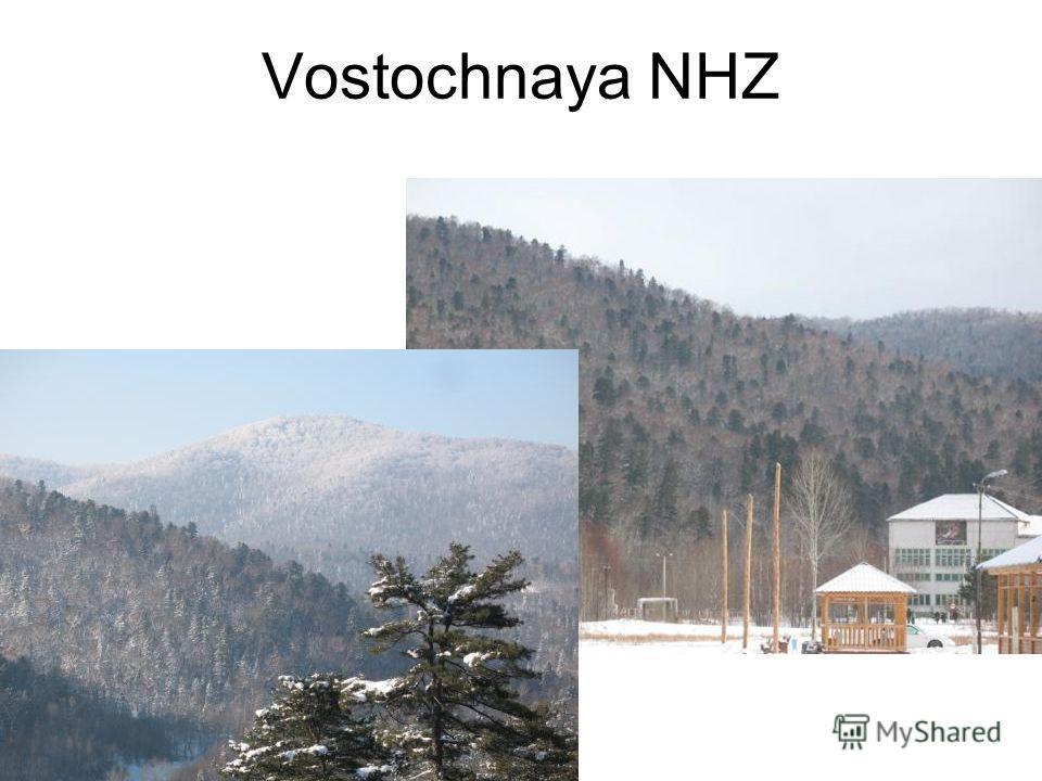 Vostochnaya NHZ