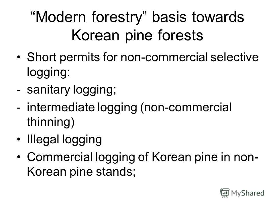 Modern forestry basis towards Korean pine forests Short permits for non-commercial selective logging: -sanitary logging; -intermediate logging (non-commercial thinning) Illegal logging Commercial logging of Korean pine in non- Korean pine stands;
