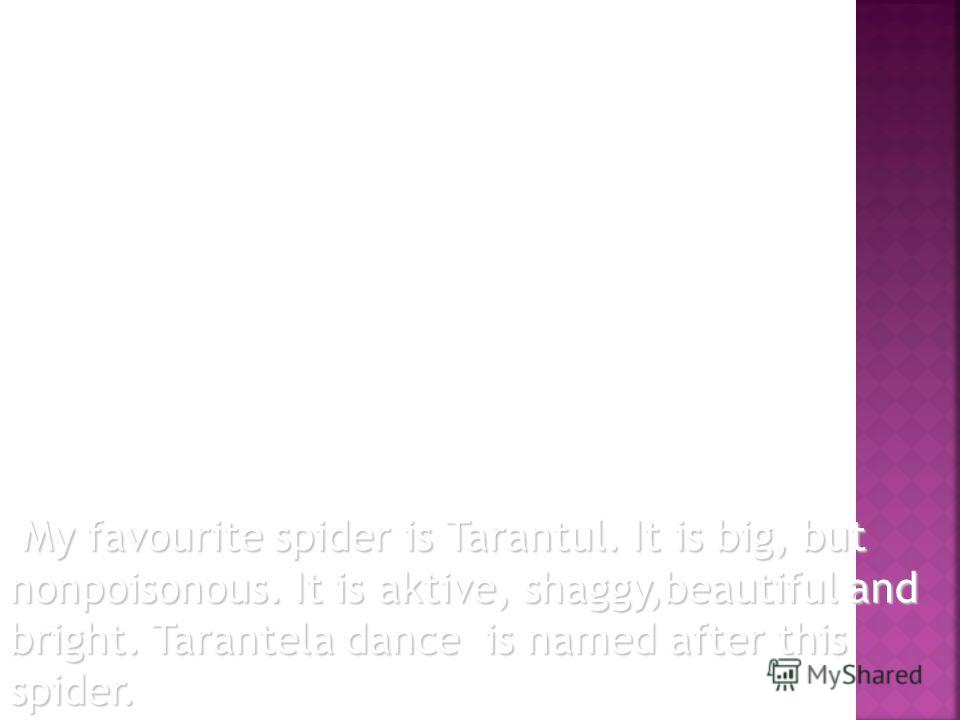 My favourite spider is Tarantul. It is big, but nonpoisonous. It is aktive, shaggy,beautiful and bright. Tarantela dance is named after this spider. My favourite spider is Tarantul. It is big, but nonpoisonous. It is aktive, shaggy,beautiful and brig