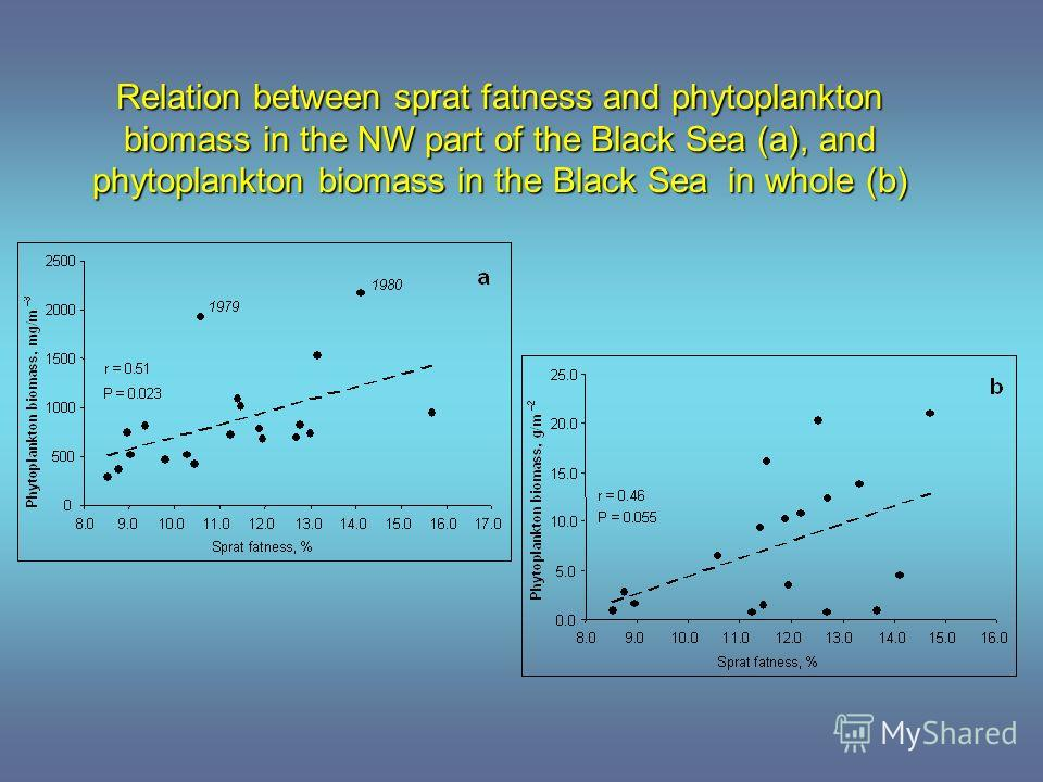 Relation between sprat fatness and phytoplankton biomass in the NW part of the Black Sea (a), and phytoplankton biomass in the Black Sea in whole (b)