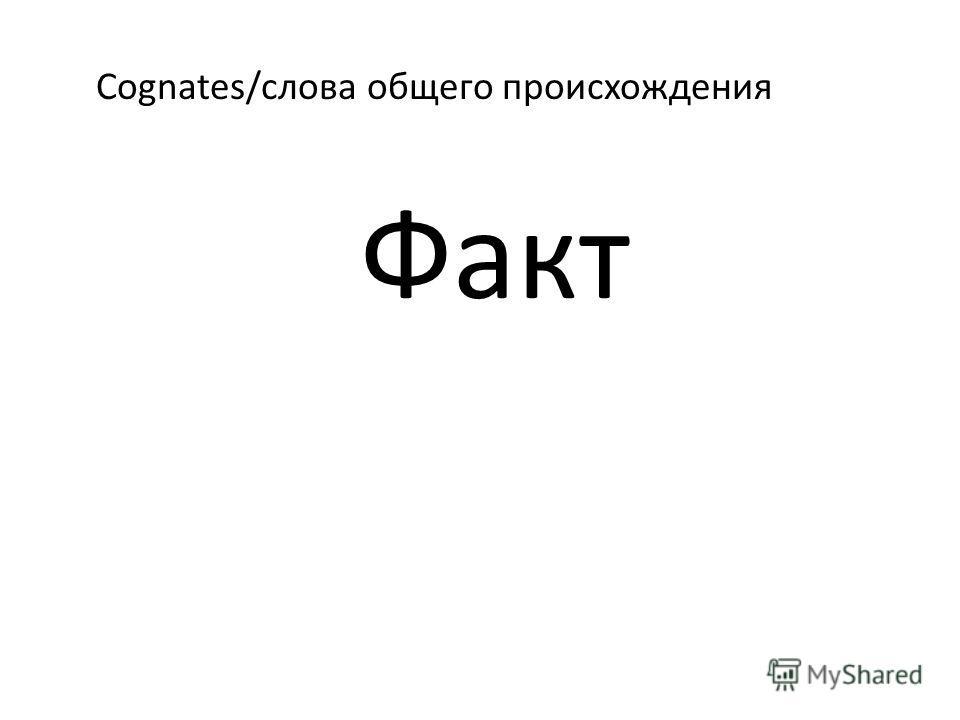 Cognates/слова общего происхождения Факт