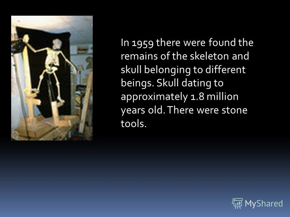 In 1959 there were found the remains of the skeleton and skull belonging to different beings. Skull dating to approximately 1.8 million years old. There were stone tools.