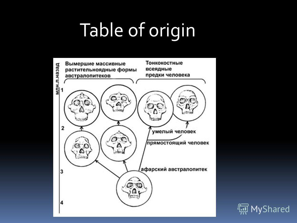 Table of origin