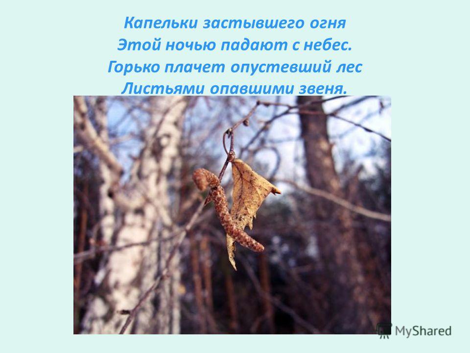 Капельки застывшего огня Этой ночью падают с небес. Горько плачет опустевший лес Листьями опавшими звеня.