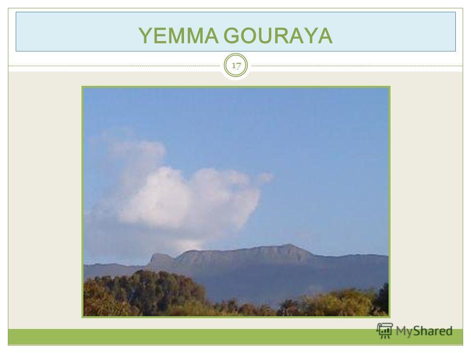YEMMA GOURAYA 17