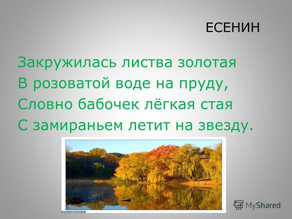 ЕСЕНИН Закружилась листва золотая В розоватой воде на пруду, Словно бабочек лёгкая стая С замираньем летит на звезду.