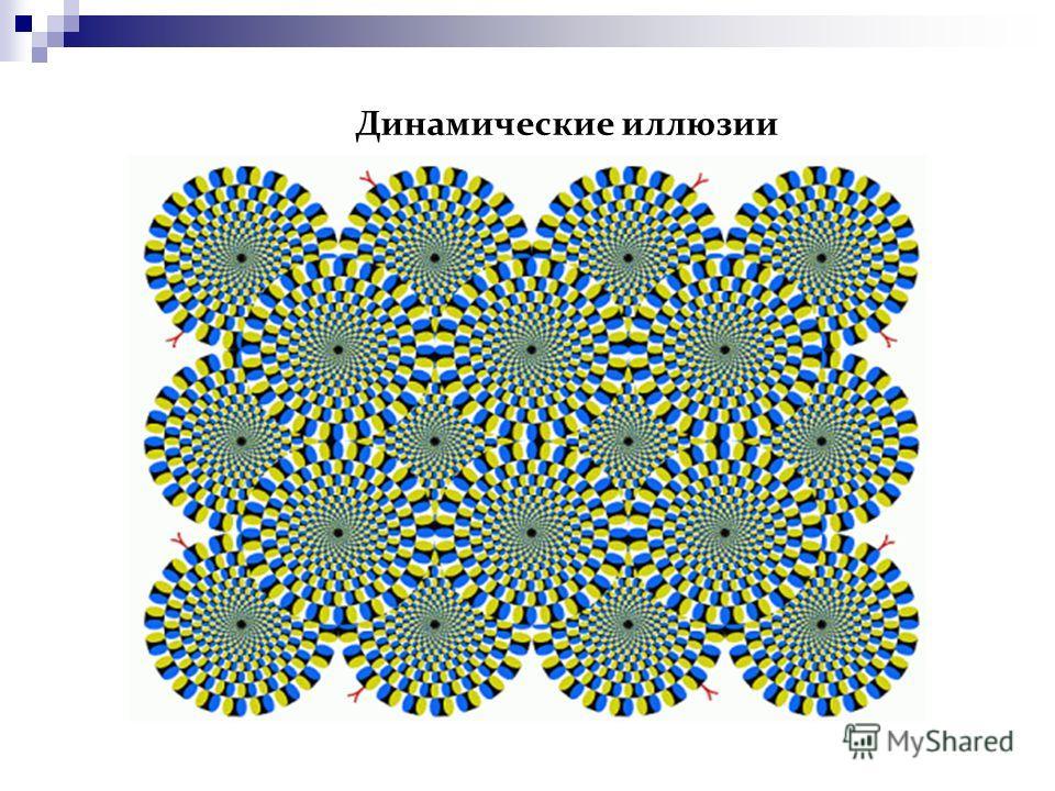 Динамические иллюзии