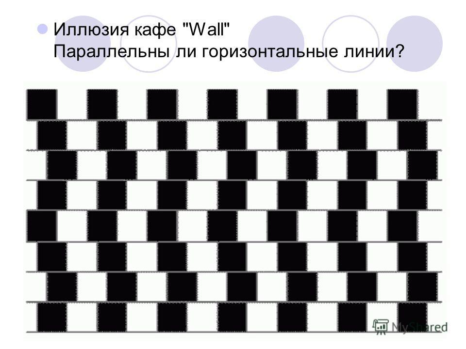 Иллюзия кафе Wall Параллельны ли горизонтальные линии?