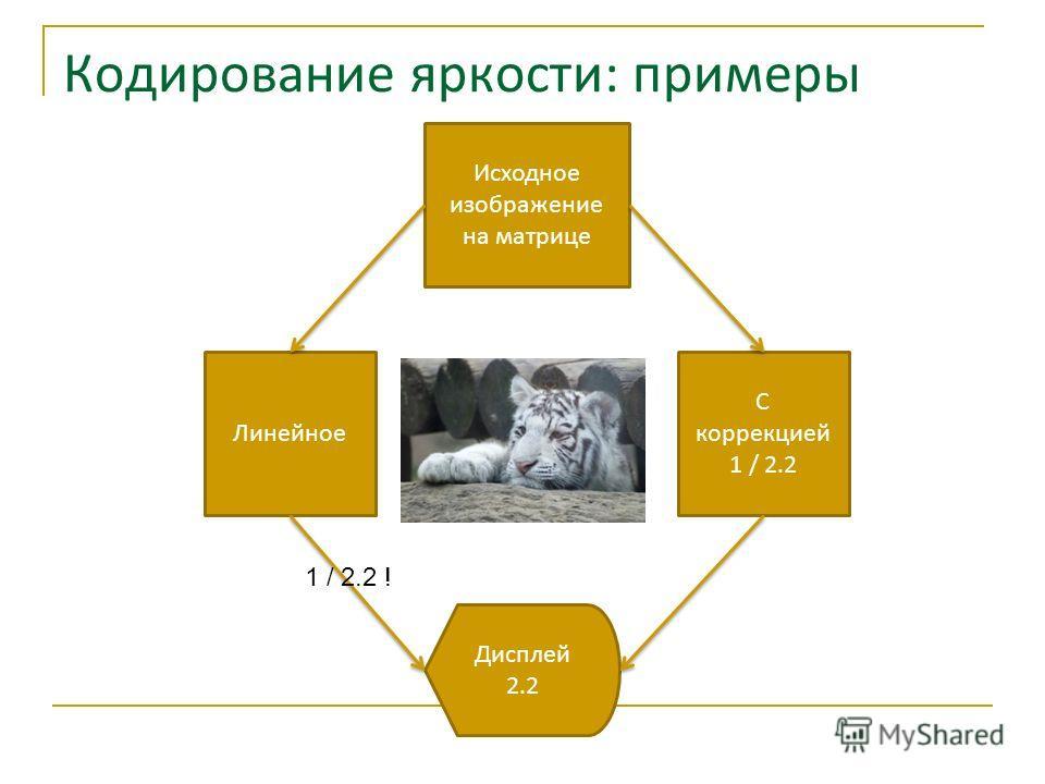 Кодирование яркости: примеры Исходное изображение на матрице Линейное С коррекцией 1 / 2.2 Дисплей 2.2 1 / 2.2 !